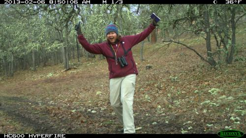My opportunity to be a star. Love that trail camera.