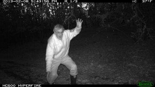 A strange animal caught in the dark with the trail camera.